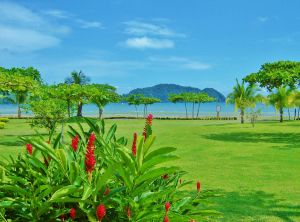 los suenos homes for sale